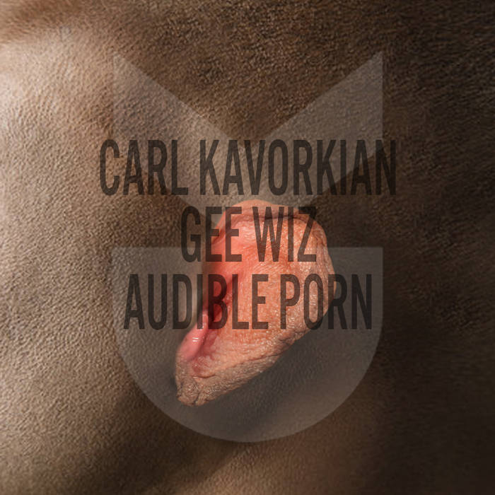 Audible Porn cover art