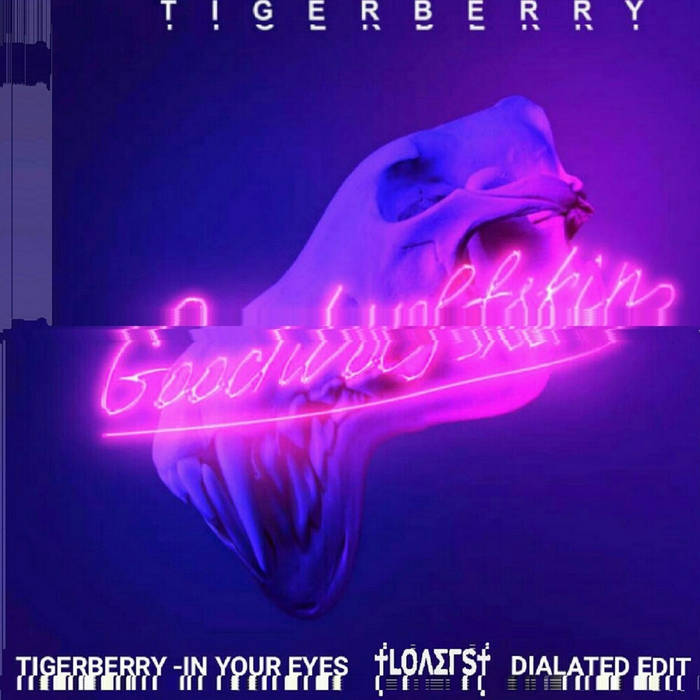 Tigerberry-In Your Eyes (†LOΛΣΓS† Dialated edit) cover art