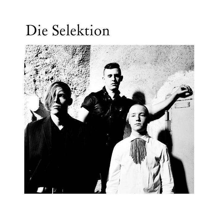 Die Selektion cover art