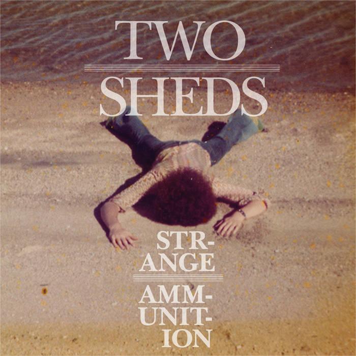 Strange Ammunition cover art