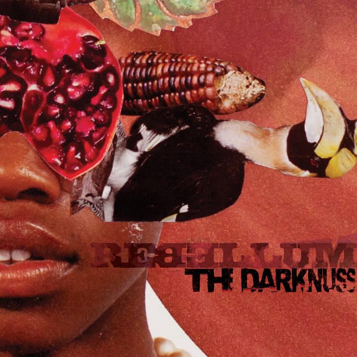 The Darknuss cover art