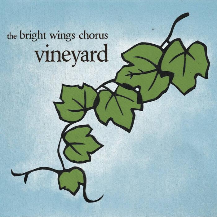 Vineyard cover art