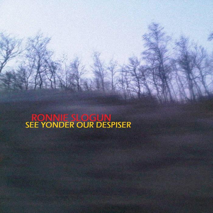 See Yonder Our Despiser cover art