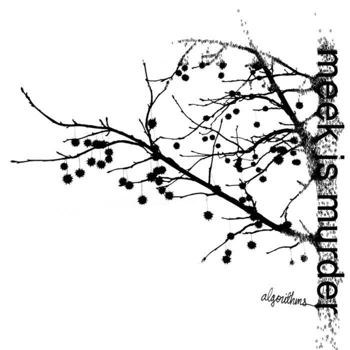 Algorithms cover art