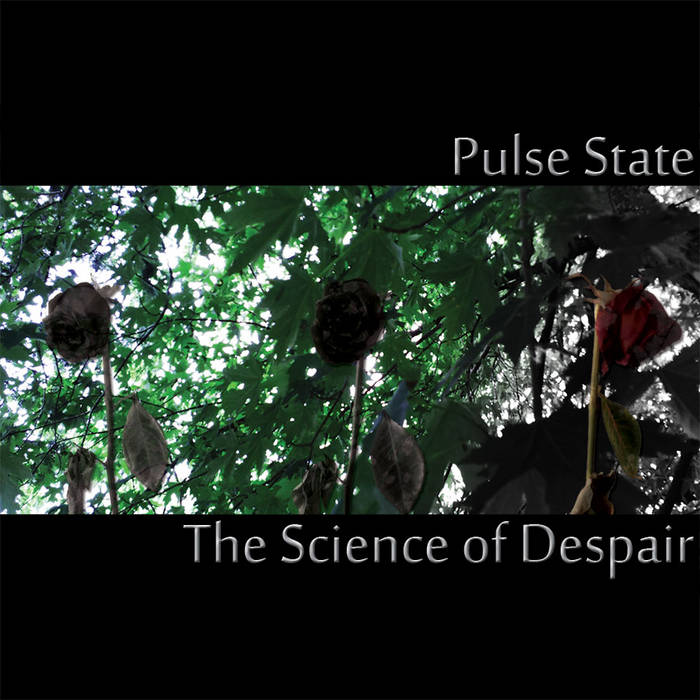 The Science of Despair cover art