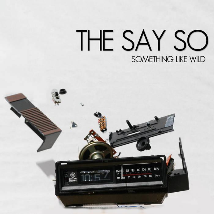 Something Like Wild cover art