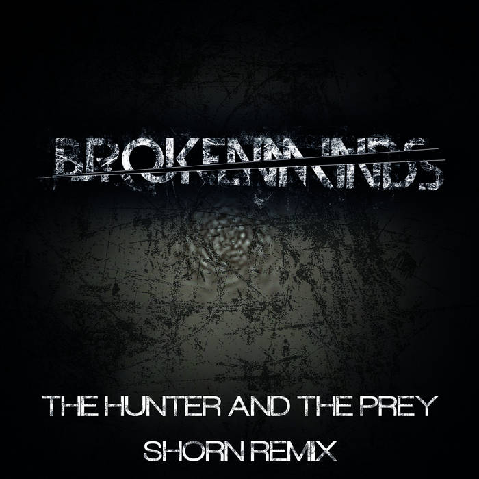 The Hunter & The Prey (Shorn Remix) cover art