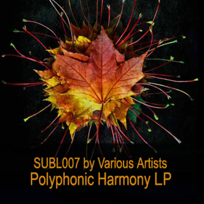 VA - Polyphonic Harmony LP (SUBL007) cover art