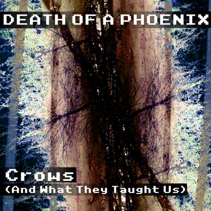 Crows (And What They Taught Us) cover art