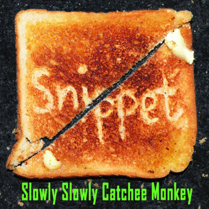 Slowly Slowly Catchee Monkey cover art