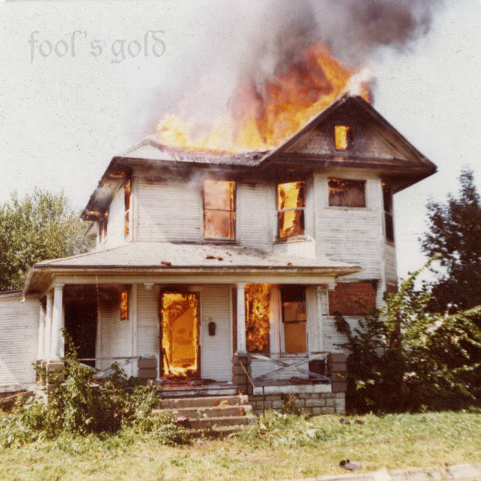 Fool's Gold cover art
