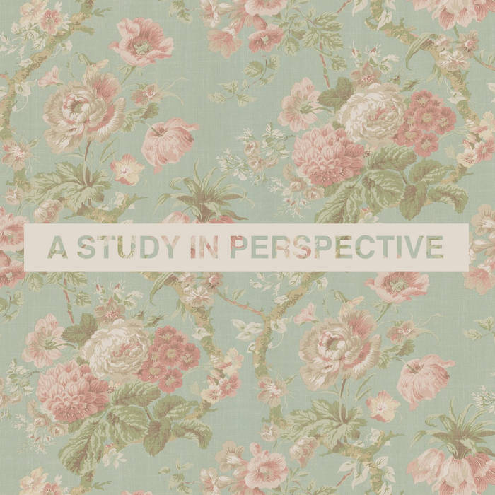 A Study in Perspective cover art