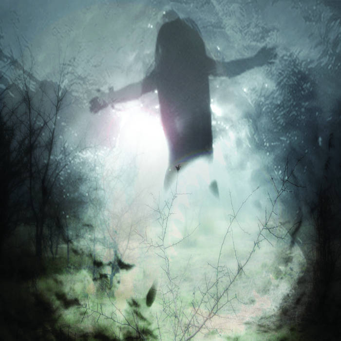 The Great White Shark EP cover art