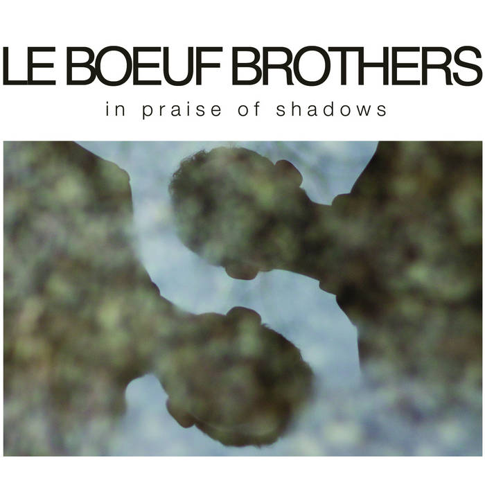 In Praise of Shadows cover art