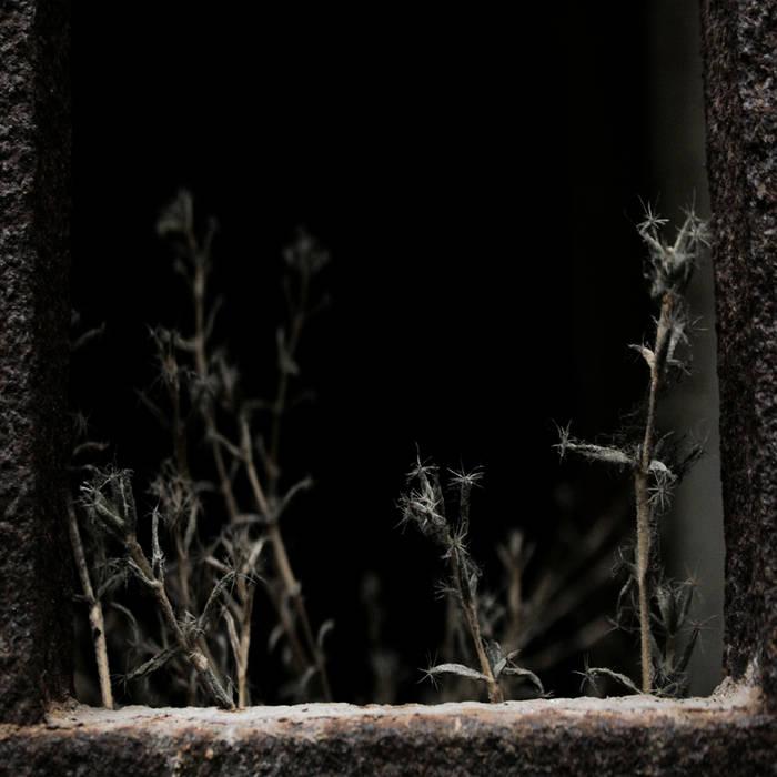 Thomas Bel + Monolyth & Cobalt - Matins D'Octobre cover art