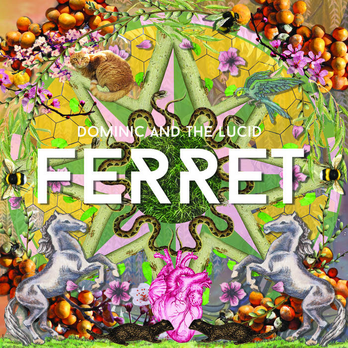 FERRET cover art