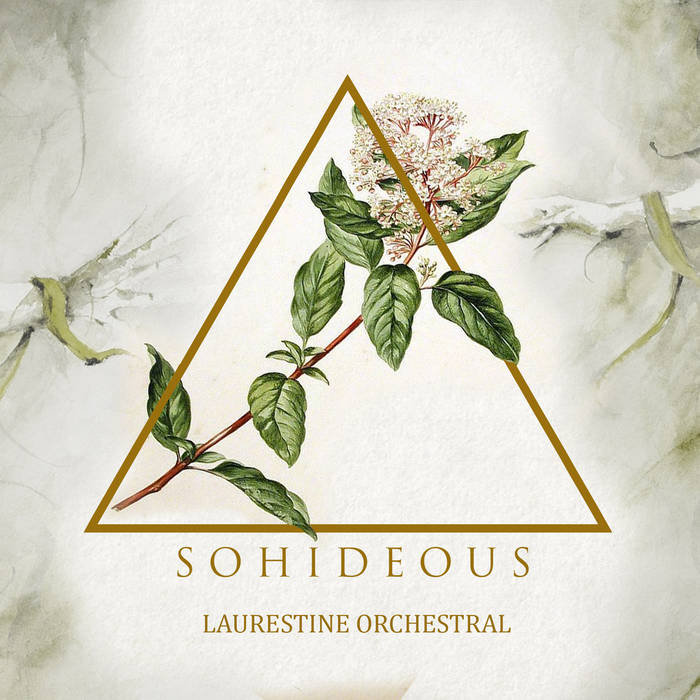 Laurestine Orchestral cover art