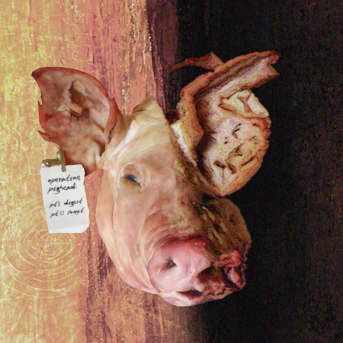 OPERATION PIG-HEAD - pt.I The Digest cover art