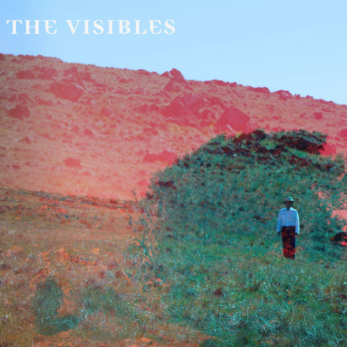 The Visibles cover art