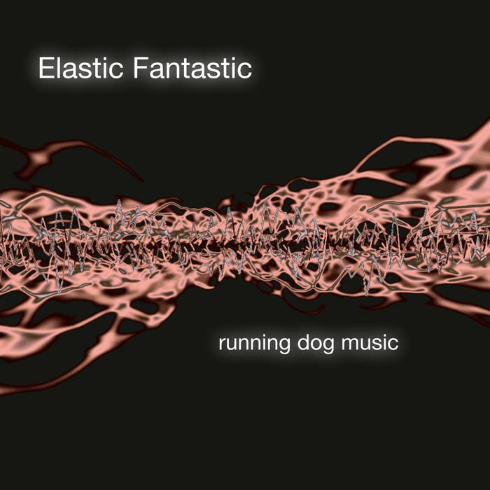 Elastic Fantastic cover art