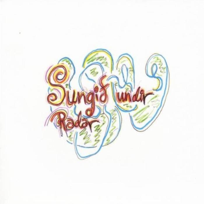 Thú ert nömber (b-side to Sungið undir Radar) cover art