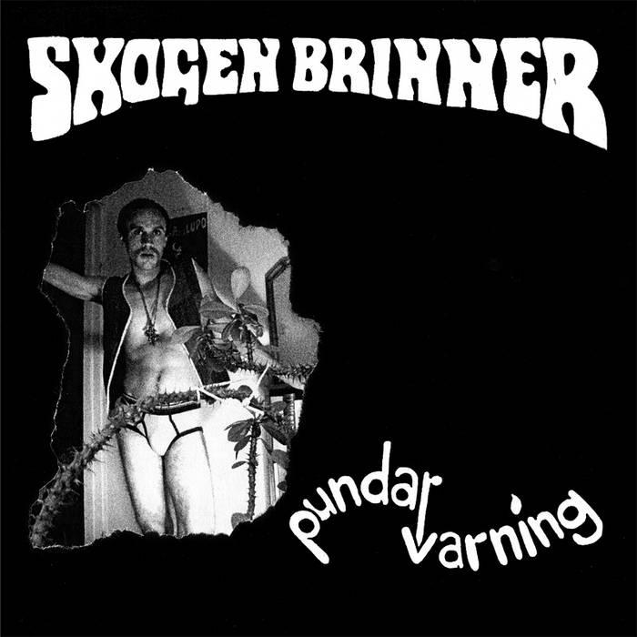 Skogen Brinner - s/t cover art