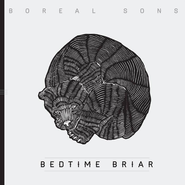 Bedtime Briar cover art