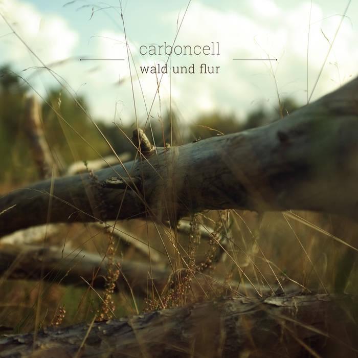 wald und flur EP cover art