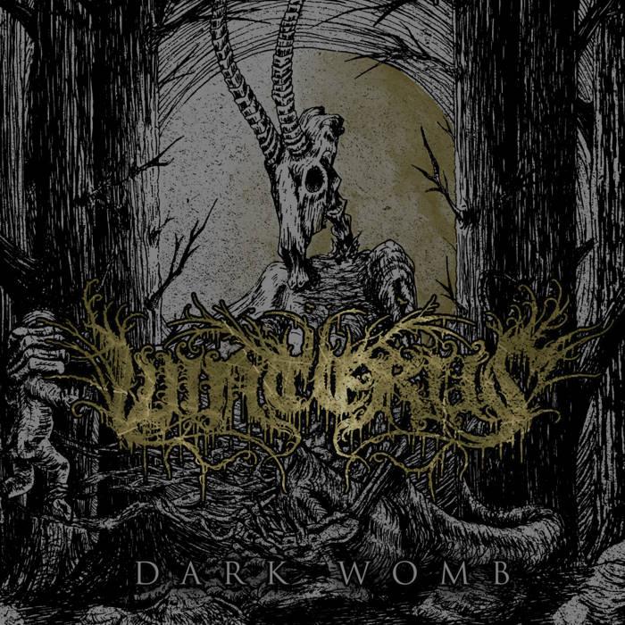 DARKWOMB cover art