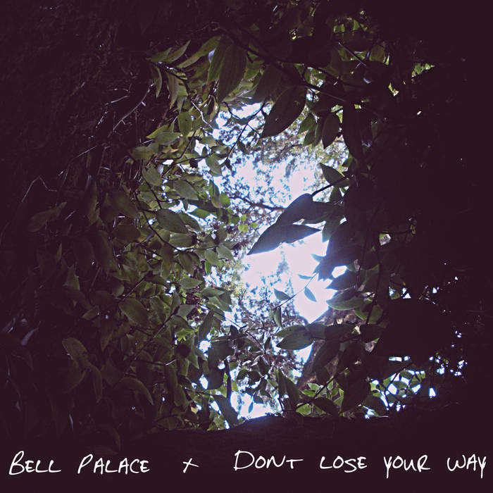 Don't Lose Your Way cover art