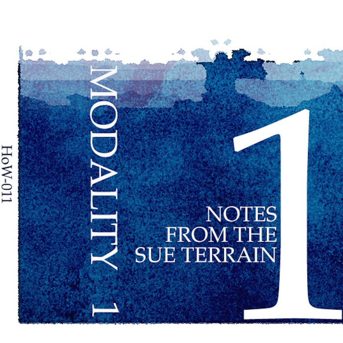 Notes From the Sue Terrain cover art