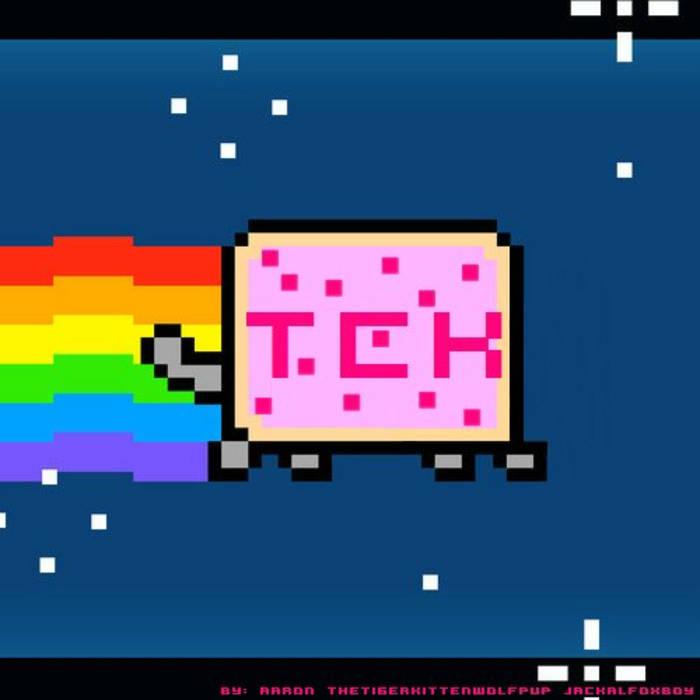 Nyan Cat(TCK ElectroDub Remix) cover art