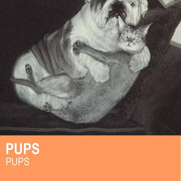 PUPS cover art