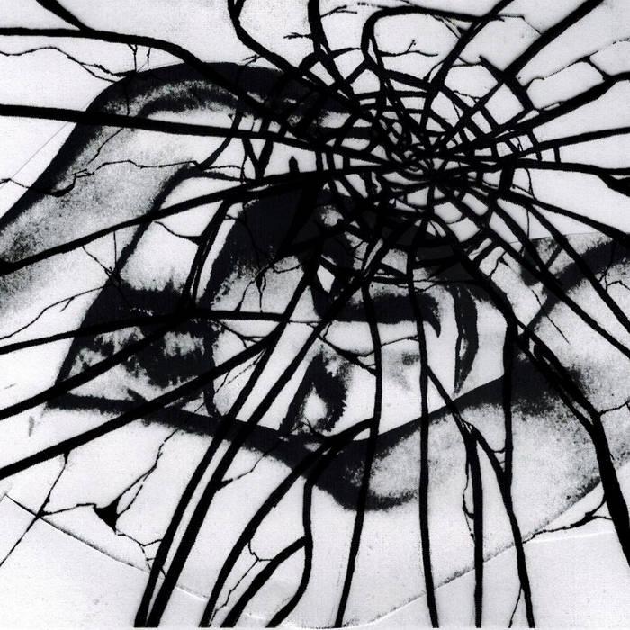 "Split 12"" w/ Autonomy cover art"