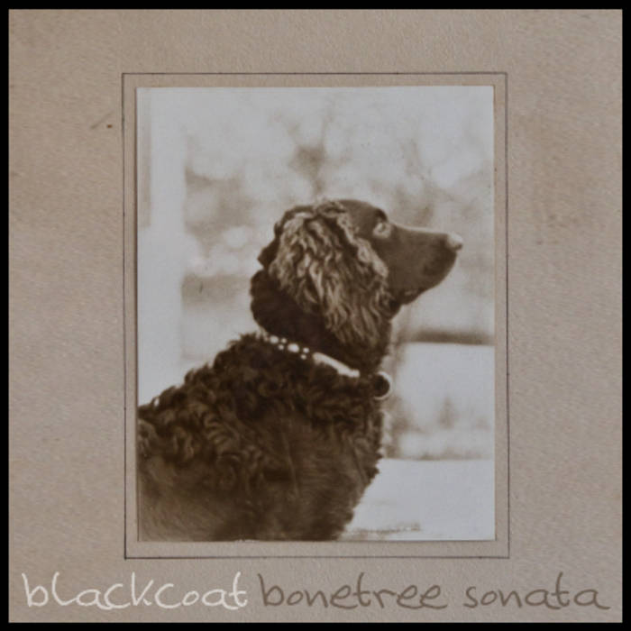 Bonetree Sonata EP cover art