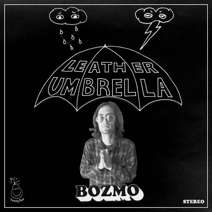Leather Umbrella cover art