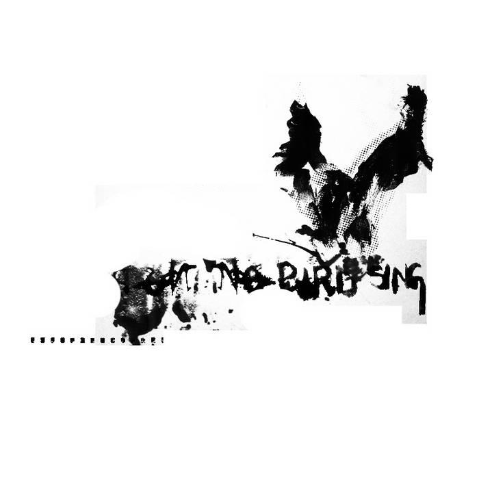 No Bird Sing cover art