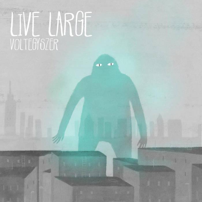 Voltegyszer cover art
