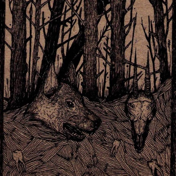 Split with Korcha cover art