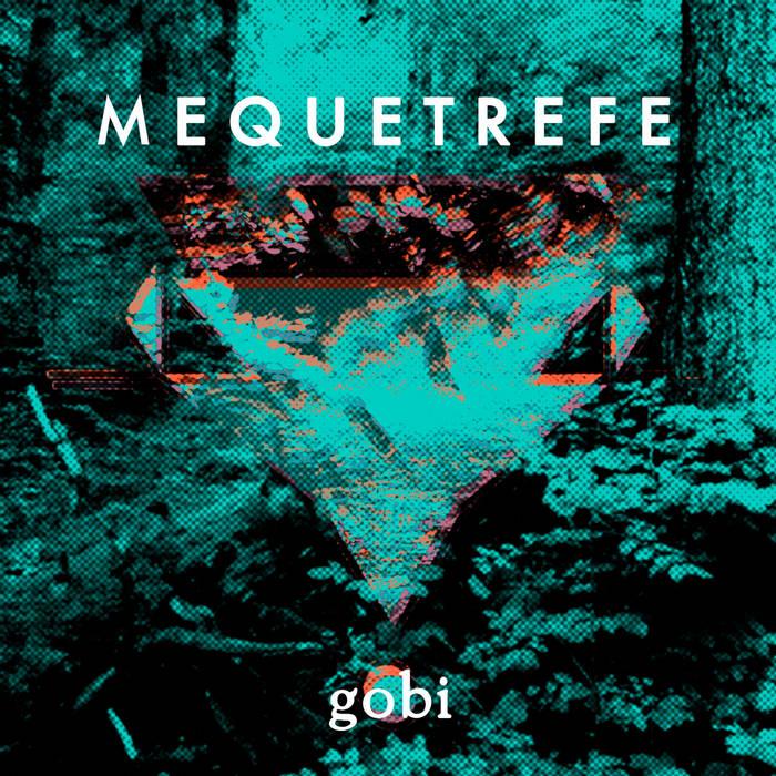 Gobi cover art
