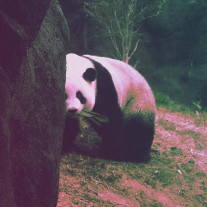 Sweet Panda Beats cover art