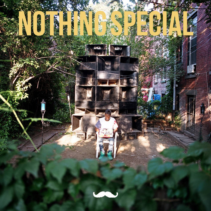 nothinG special cover art