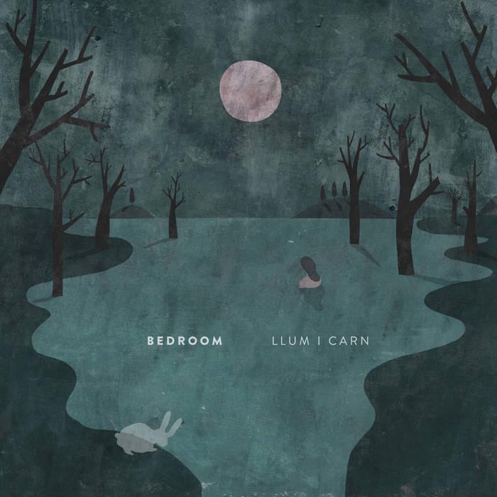 Llum i Carn cover art