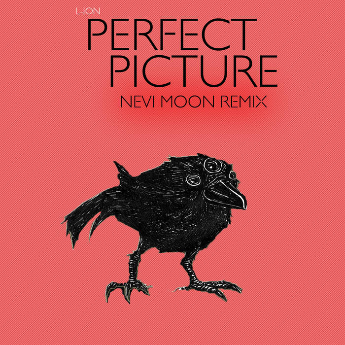 Perfect Picture (Nevi Moon Remix) cover art