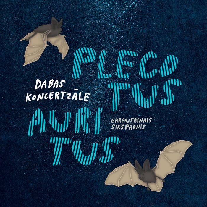 Plecotus auritus cover art