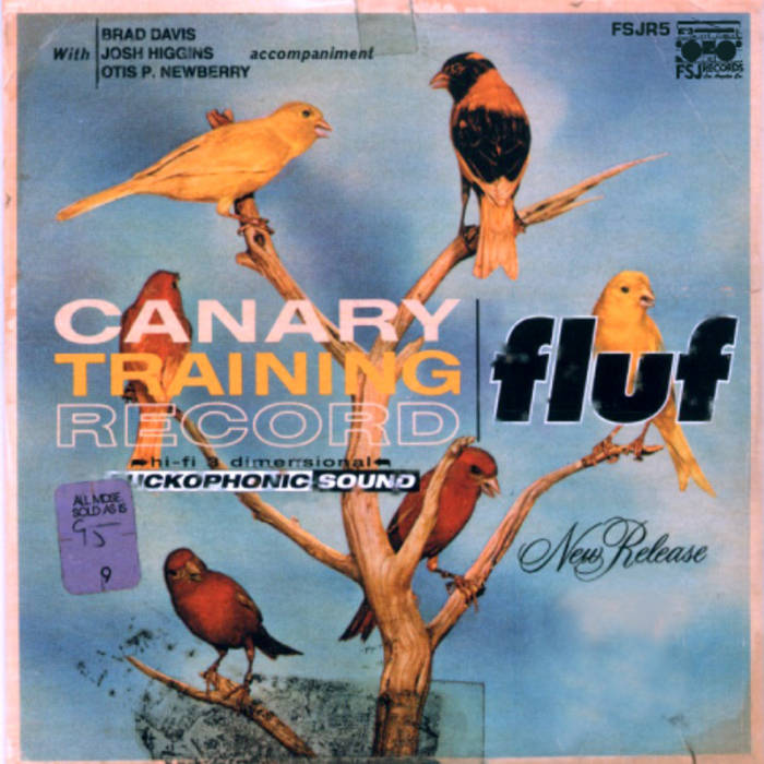 canary training record cover art
