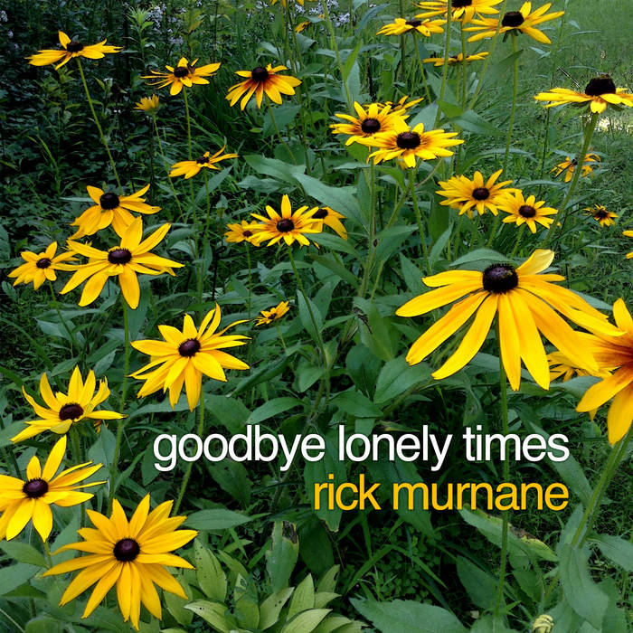 Goodbye Lonely Times cover art