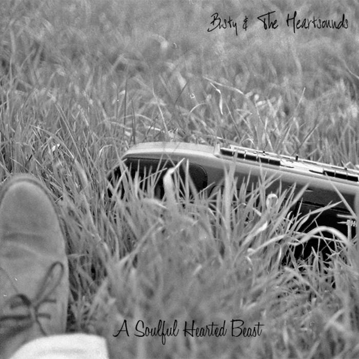 A Soulful Hearted Beast cover art