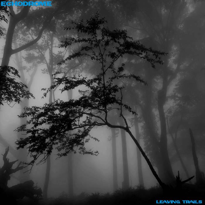 Leaving Trails cover art
