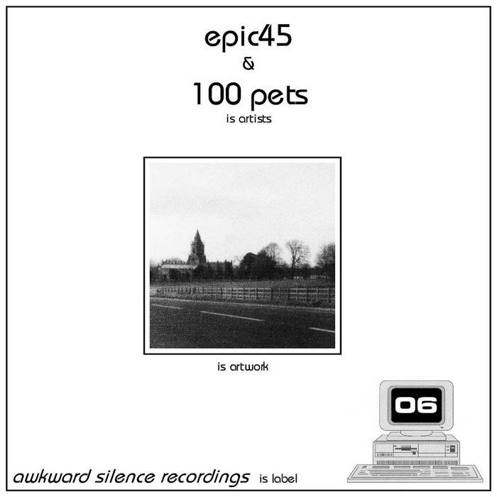epic45 / 100 Pets - split EP cover art